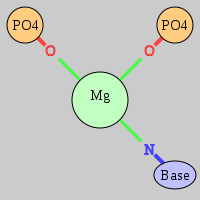 MgRNA type cis-2OP-NB